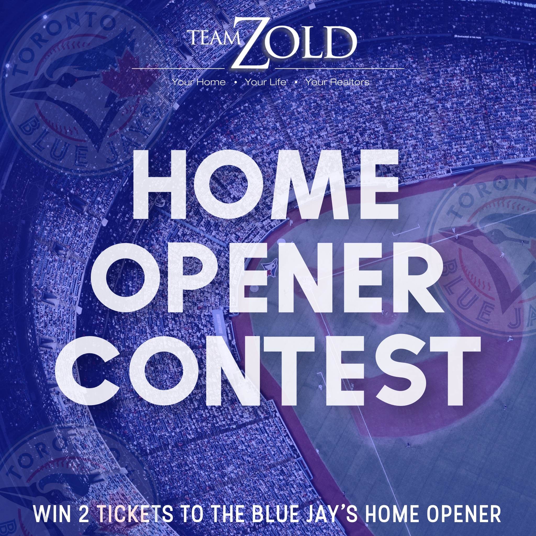 Team Zold Blue Jays Contest