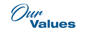 Our Values, Team Zold, Values